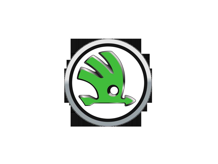 reprogrammation moteur Skoda